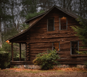 Log home in the middle of the woods